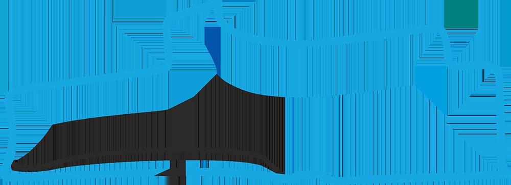 EPrix di Montreal Gara 2